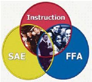 FFA 3 parts