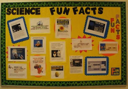 Fun Facts in hall