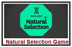 What Does Natural Selection Mean Bbc Bitesize