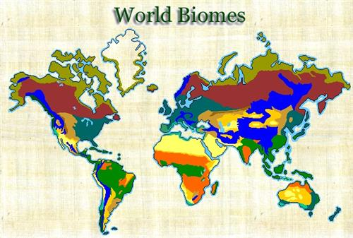The world biome blue planet
