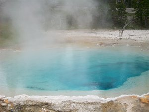 Hot Spring from Yellowstone National Park